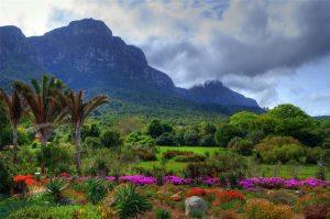 ЮАР — современная страна на другом конце света