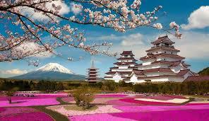 Аромат сакуры, зеркальные небоскребы и величественная гора Фудзи. Время покорять Японию