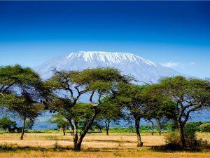 Кения - сердце Африки. Страна, где дикая природа занимает главное место