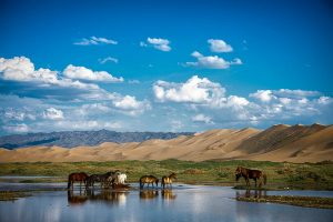 Самобытная Монголия