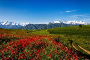 Горные хребты Тянь-Шань, прохладное озеро Иссык-Куль - восточная красота Киргизии